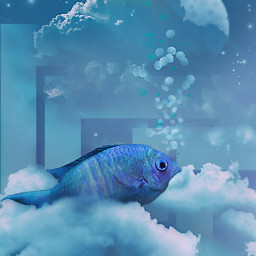 night dreams surreal fish blue clouds freetoedit