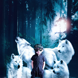 freetoedit children nature wolf unsplash alienized wallpaper uhd editedwithpicsart