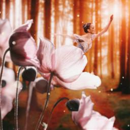 freetoedit girl dance beauty magic dream forest nature sun sunny sunlight day daylight flower bloom blooming sparkle stars trees pretty cute ballet ballerina aesthetic fantasy