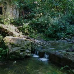 freetoedit myphotography nature wood creek smallwaterfall