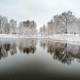 freetoedit winter water trees reflection landscape park pond blackandwhite monochrome