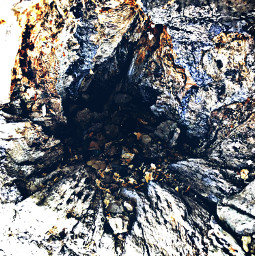 tree treehole distressed hikelife caligirl hikingadventures nature beauty seeme mood mymind myeye bchez photography edit