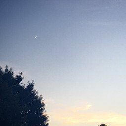 nature photography followthem minnesota myphoto moon sunset evening night blm freetoedit