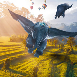 elephant dumbo valley field asia travel editedbyme createyourown artoftheday artworklovers fly flyingelephant dreamyart bestoftheday createart sky