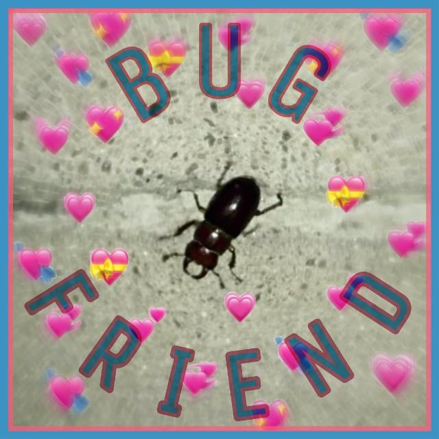 #freetoedit #bug #beetle #friend #bugfriend #nature #goodvibes
