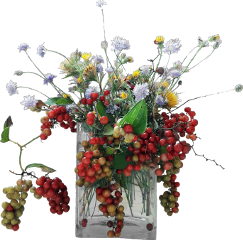 mastershoutout bouquet vase flowers berries stilllife composition freetoedit