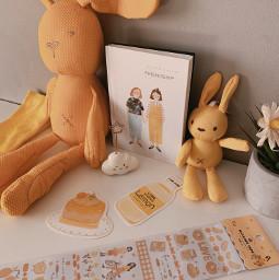 myphotography yellow korean bunny pcyellowphotography pcschoolsupplies schoolsupplies