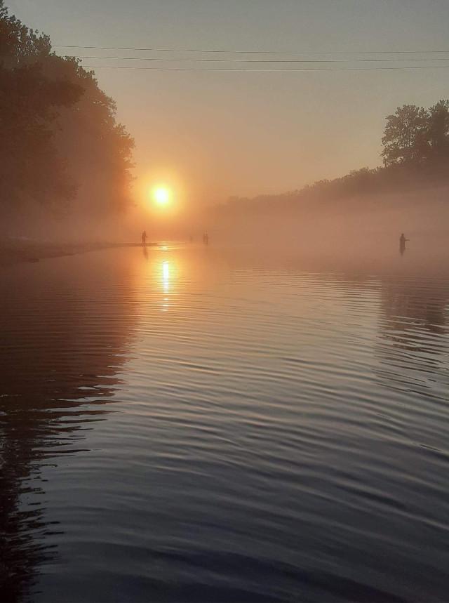 #lake #sunrise #fog #foggy #water #fishing #men #trees #nature