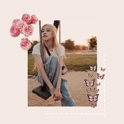 freetoedit roseblackpinkedit blackpink rose butterfly aesthetic