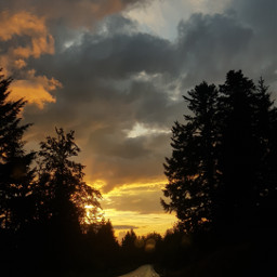 sunset blackforest clouds freetoedit photography treesilhouette