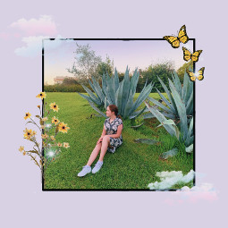 freetoedit me plant plantparty butterfly sparkle clouds pink sunset person yourebeautiful flower aloevera trees grass green greenaesthetic aesthetic