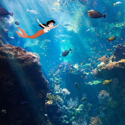freetoedit saveremixchat melody thelittlemermaid thelittlemermaid2 ocean fish