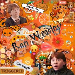 harrypotter book series movies ronweasley ronaldweasley gryffindor orange bloodyhell eatslugs text aesthetic orangeaesthetic freetoedit