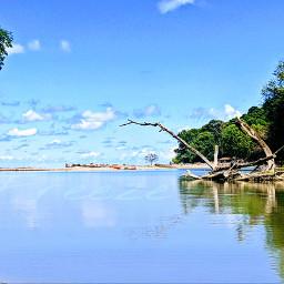 water beach driftwood sand