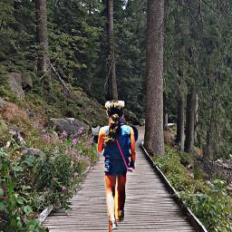inthewoods hiking exploring exploringnature freetoedit