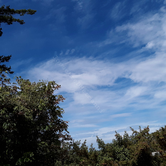#cloudscape  #clouds #jossettedhermanniphotography  #backgrounds@jossettedhermanni   #jossettedhermanniartstock #jossettedhermanniart  #art #artsocks  #nubes #clouds #nature  #naturephotography  #picsartfreetoeditphotography