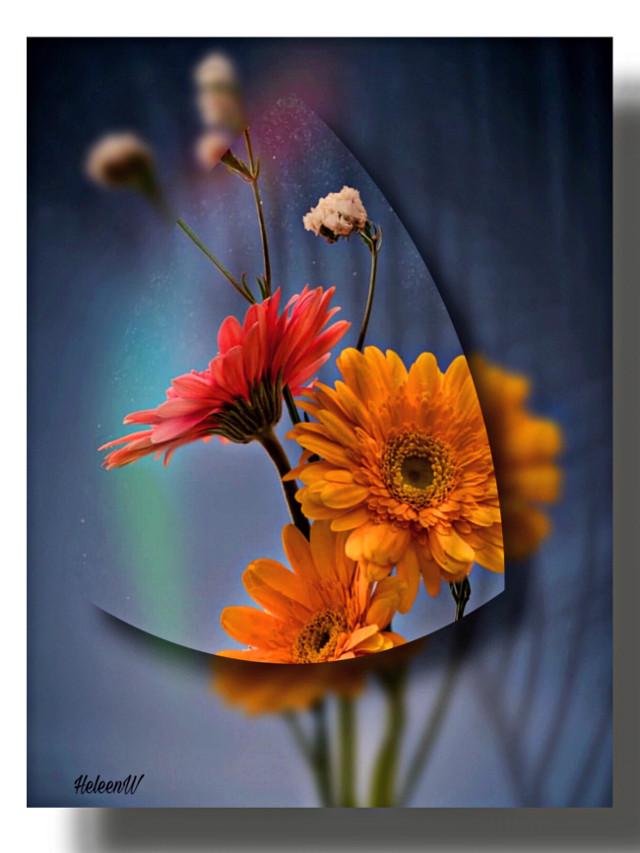#flowers #floral #flowerart #makeawesome #shadowmask #prismeffect #shadoweffect #madewithpicsart  #myedit #myart #interesting #colorful #creativity #diversity #freetoedit