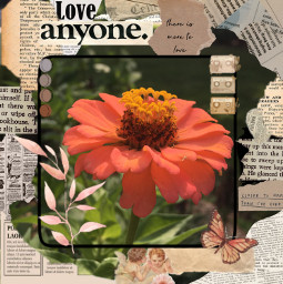 flower brown newspaper myphoto photography aesthetic floweraesthetic beight beigecolourpallate browncolourpallate love newspaperaesthetic newspaperclippings collage newspapercollage boarder frame photo photoframe newspaperframe summer vibes summeraesthetic freetoedit
