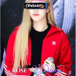 rose roseblackpink rosequeen freetoedit