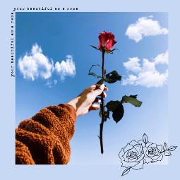 freetoedit blue beautiful rose redrosesarebeautiful clouds aesthetic