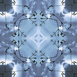 freetoedit mirrormaniamonday art design style mirrorart playingwithnature photomanipulation editedstepbyestep mirroreffect abstractart simmetry aesthetic abstractionlines artisticexpression myphotomyedit mystyle myart