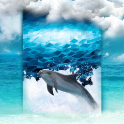 freetoedit dolphin nature sea