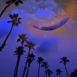 palmstrees sky night summer surreal moon palmsprings myoriginalphoto freetoedit stars blueishpurple