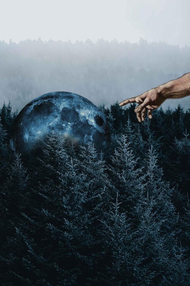 #freetoedit #创世纪 #forest #forestremix #moon