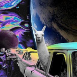 space cars pastel llama alpaca alpaka colors rainbow stars galaxy earth clouds planet saturn holographic holo vintage old aesthetic edit myedit remix hopeyoulikeit freetoedit