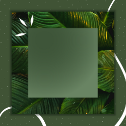frame freetoedit green aesthetic ftestickers origftestickers stayinspired createfromhome remixit meeori ••••••••••••••••••••••••••••••••••••••••••••••••••••••••••••••• sticker meeori