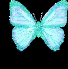 buterflies butterfly glitter glittery sparkle myedit indie indiekids indierock freetoedit