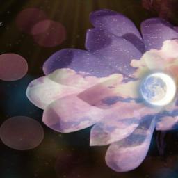 doubleexposure flower whiteflower space galaxy bokeheffect masks freetoedit