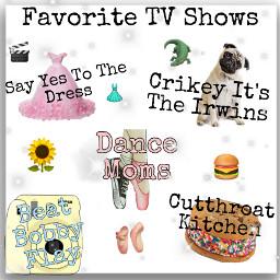 niche favorite tv shows part1 sayyestothedress dancemoms beatbobbyflay cutthroatkitchen crikeyitstheirwins animalplanet foodnetwork discovery freetoedit
