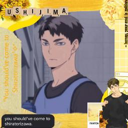 thankyouall ushijima ushijimawakatoshi haikyuu shiratorizawa yellowaesthetic freetoedit