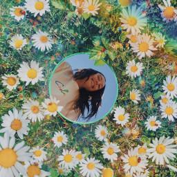replay edit girl flowers floral blue rainbow daisies model aesthetic beautiful nature mirror mirroredit cool natural popular flower girlinamirror mirroreffect mirrorinflowers outside floweraesthetic mirrorart freetoedit