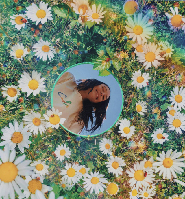 #replay #edit #girl #flowers #floral #blue sky #rainbow #daisies #model #aesthetic #beautiful #nature #mirror #mirroredit #cool #natural #popular #flower #girlinamirror #mirroreffect #mirrorinflowers #outside #floweraesthetic #mirrorart