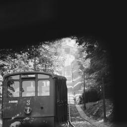 blackandwhite nature photography bergbahn mountainrailway summer interesting mystery travel freetoedit