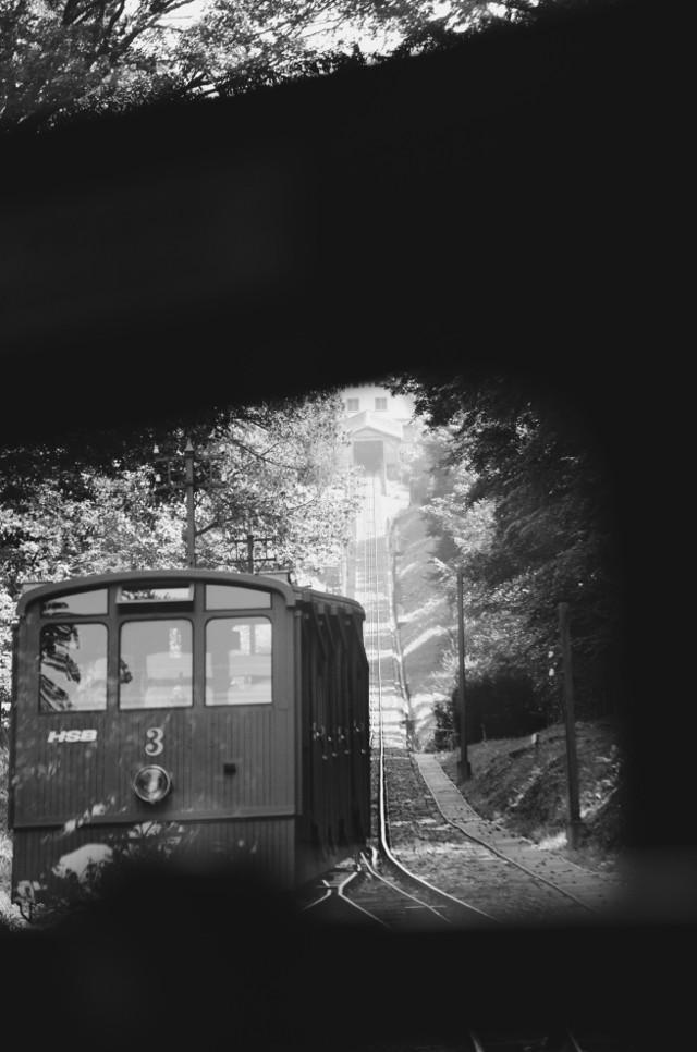 #blackandwhite #nature #photography #bergbahn #mountainrailway #summer #interesting #mystery #travel #interesting #freetoedit