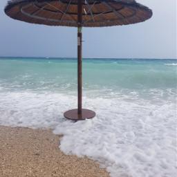 freetoedit beach sealife seascape seaview pcminimalism
