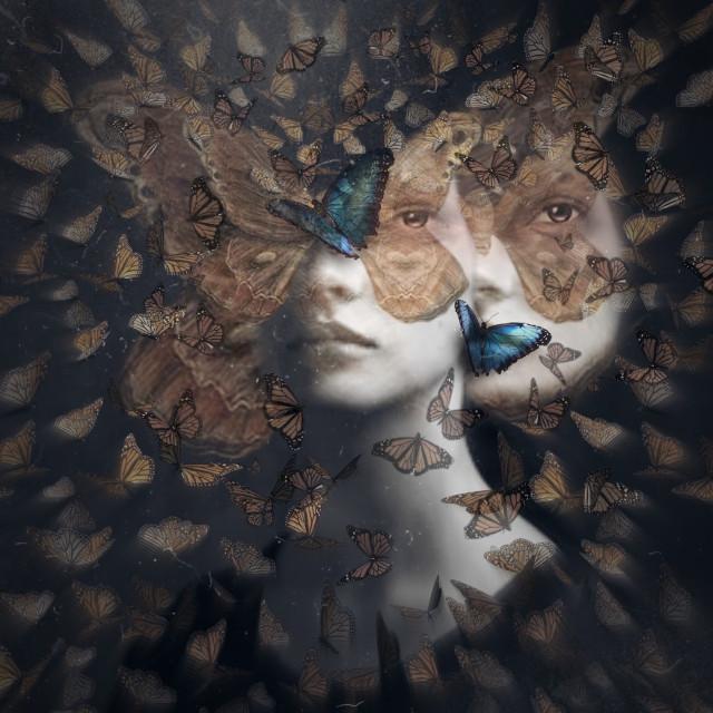#freetoedit #butterflyeffect #butterfly #moth #blureffect #vintage#3d #3deffect #motion