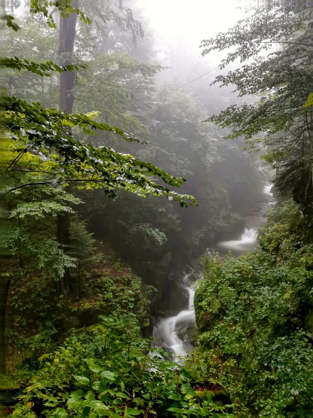 #waterfall #foggyday #forest #nature #beautifulnature #myphoto #travel #adventure #mountains #Poland