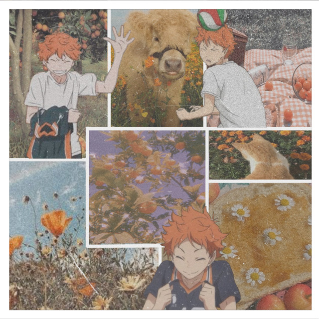 #anime #art #weeb #hinitashoyo #orange #orangebackground #orangeaesthetic #aestetic #orangeart #orangeaesthetic🍊 #hinitaart #cottagecore #hinitalover #haikyu #haikyubackground #collage #aestheticcollage #orangecollage #borders #whiteborders #aestheticedit #aestheticart #aesteticanime...credits to anyone who made these stickers😼👍...today i did white borders because they matched more then black...inspired by @malypi...😺
