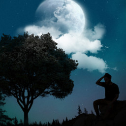 freetoedit replay picsartreplay madewithpicsart myedit araceliss silhouette