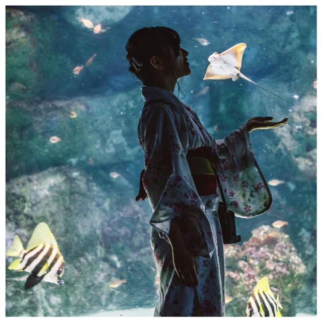 #icu_japan #ig_cameras_united #ocean #fish #featuredimages #japan #beauty #mantaray #aquarium #kimono #vampikisses