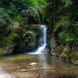 freetoedit waterfall forest nature photography blackforest