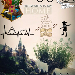 harrypotter hogwarts afterallthistime always dobby freetoedit