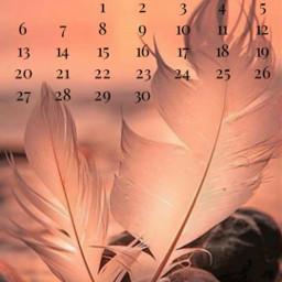 freetoedit pink feather september 2020 srcseptembercalendar