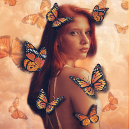 replay remixit yellow aesthetic yellowaesthetic orange orangeaesthetic butterfly butterflies butterflyaesthetic clouds vintage vintageaesthetic myedit girl butterflygirl pretty beautiful nature summervibes autumn autumnaesthetic warm warmcolours freetoedit