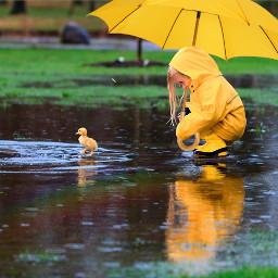 srcyellowumbrella yellowumbrella freetoedit
