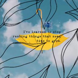 leavesborder srcyellowumbrella yellowumbrella